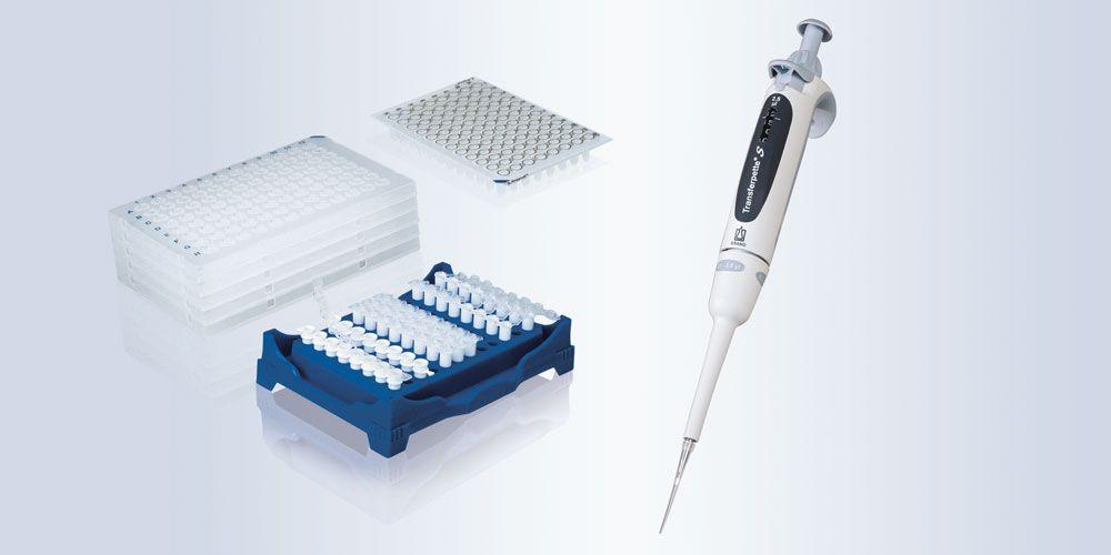 PCR und qPCR