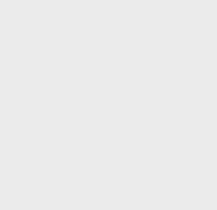 磁性搅拌棒, 十字形, PTFE